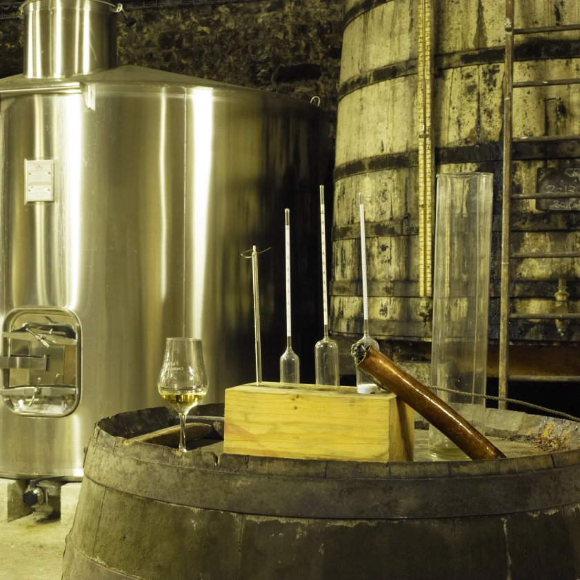 Cognac Rody Tradition & Moderne